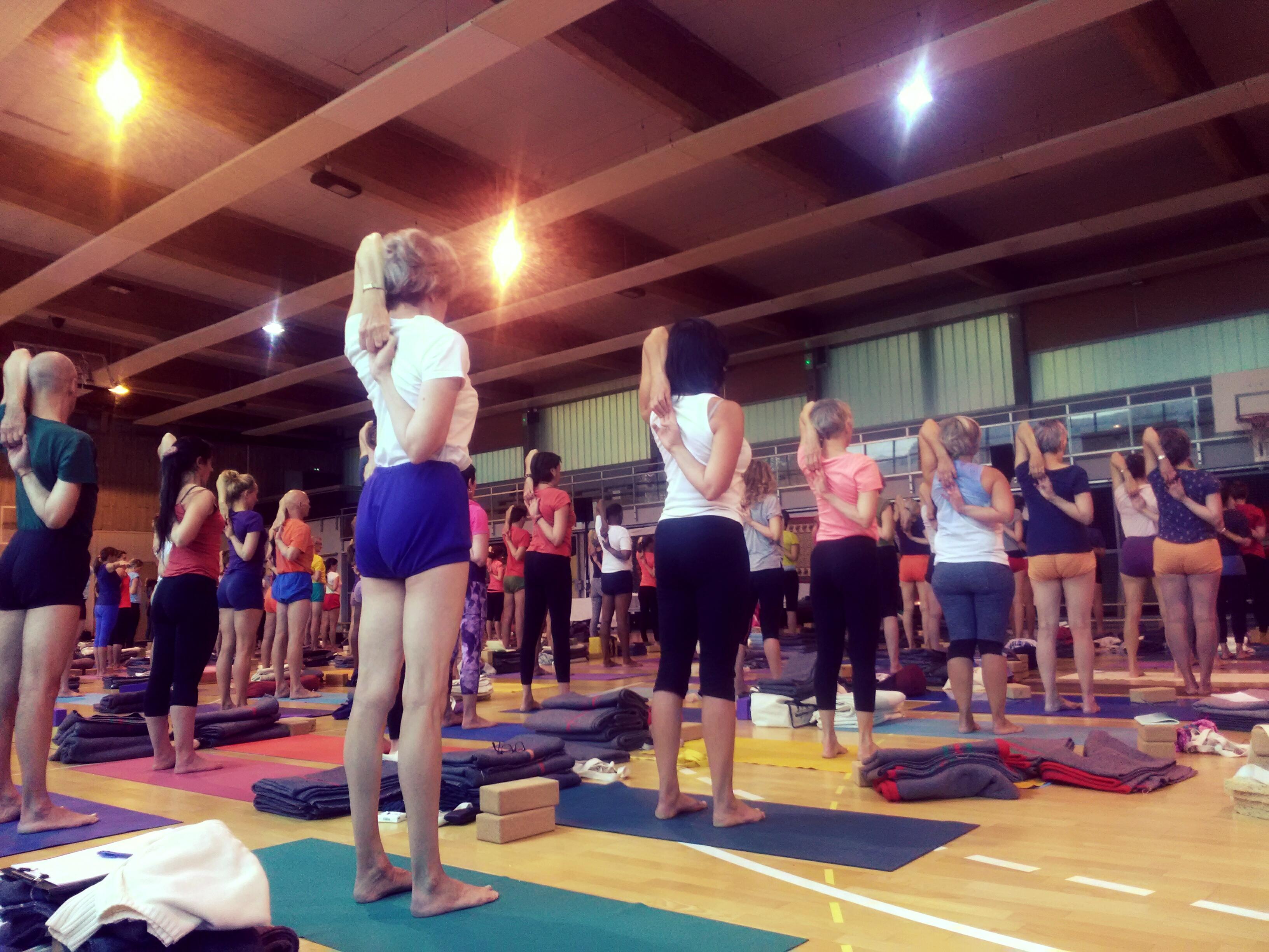Yoga Iyengar Herault