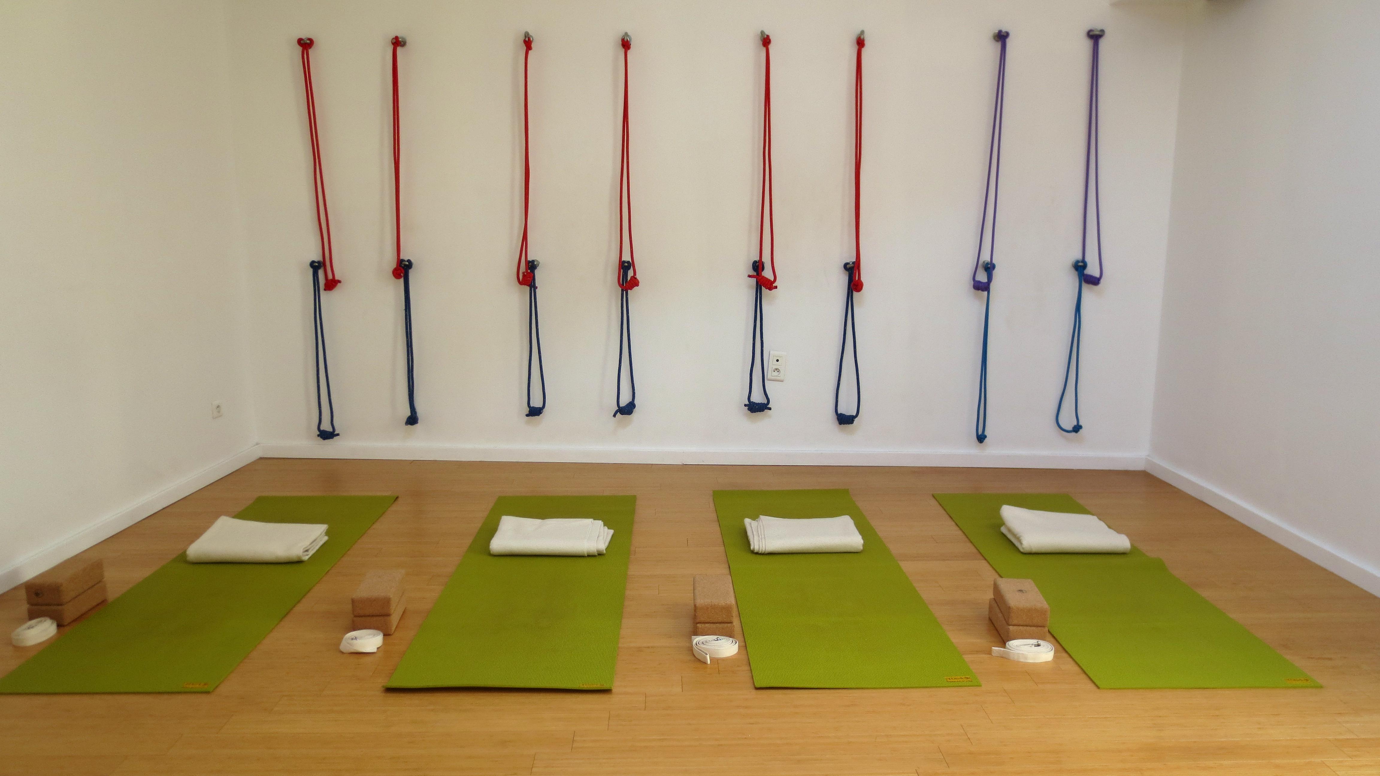 Ayushanti Yoga Iyengar Cours Herault
