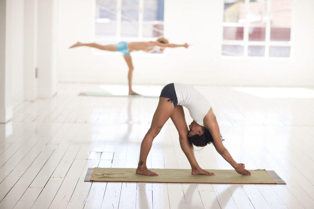 stage yoga Iyengar Hérault